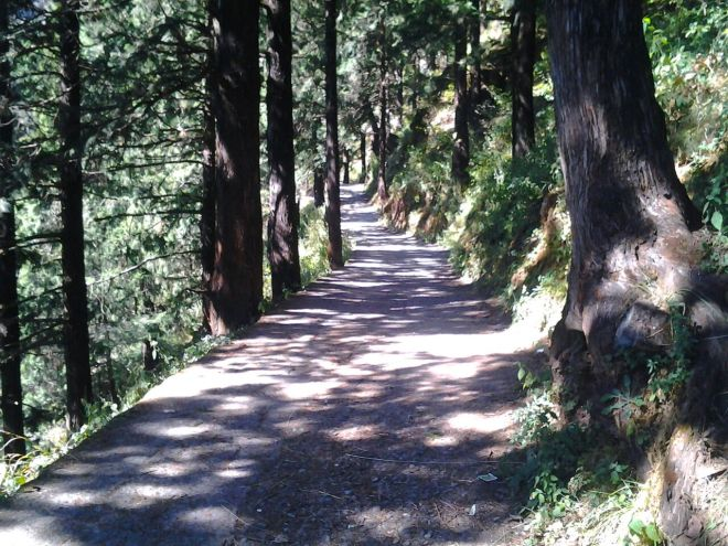 travel trekking nainital